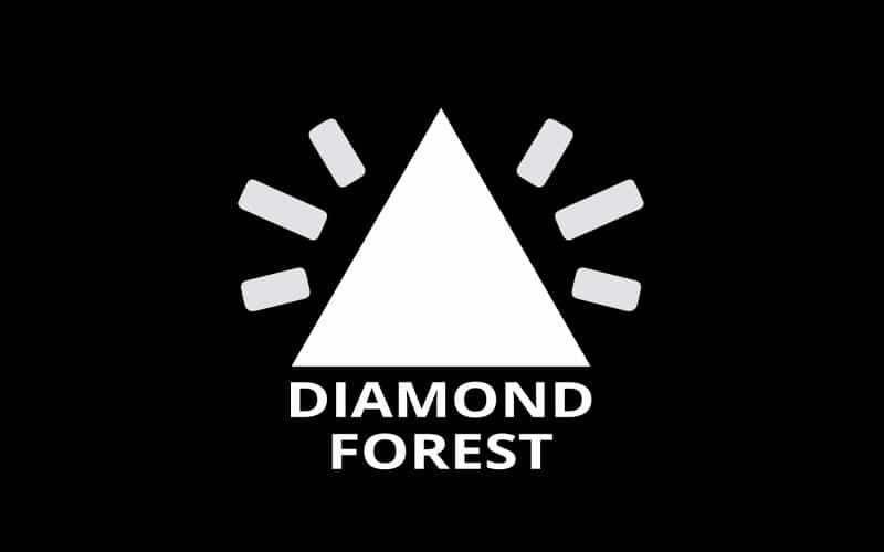 1619 - Diamond Landmark
